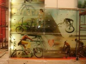 מחיצות-וקירות-זכוכית-25